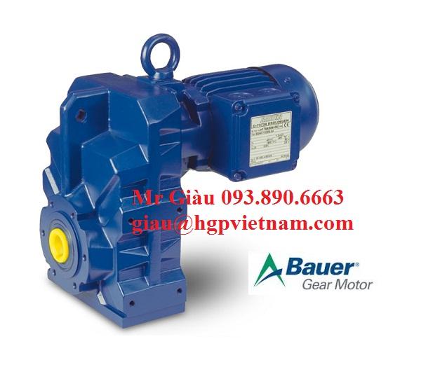 gear motor 1