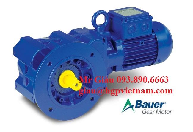 gear motor 3
