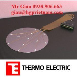 Cảm biến wafer Thermo Electric