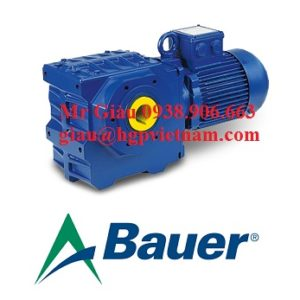 Động cơ hộp số Bauer 2