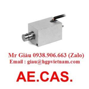 AE.CAS. Viet Nam