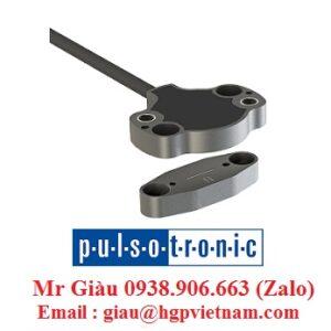 Cảm biến điện dung Pulsotronic