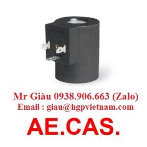 Coil AE.CAS. Viet Nam
