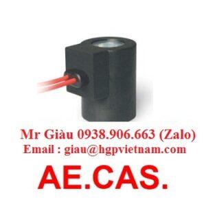 Cuộn coil AE.CAS.
