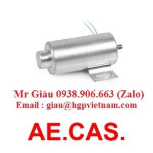 Cuộn từ AE.CAS.